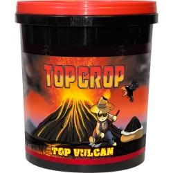 top-vulcan-01-250x250jpg