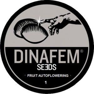 fruit-autoflowering