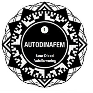 sour-diesel-auto-x1