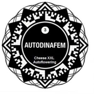 Cheese xxl x3