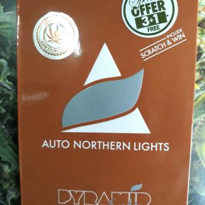 norther light auto