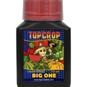 top-crop-big-one-250ml (1)